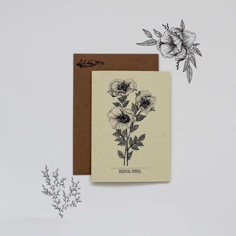 Oriental Poppies Botanical Illustration Greetings Card