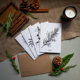 Botanical Christmas Cards - Pine