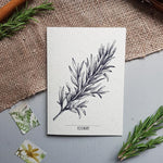 Botanical Christmas Cards - Rosemary