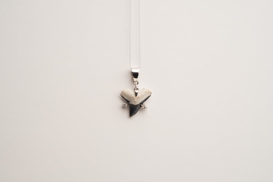 Magwayen - Black Shark Teeth Pendant 02 (Wide)