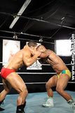 PRO SEX FIGHT 9 DVD