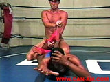 YOUNG MUSCLESTUD WRESTLING 5 DVD