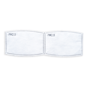 PM2.5 Filter for Filter+ (2 pack)