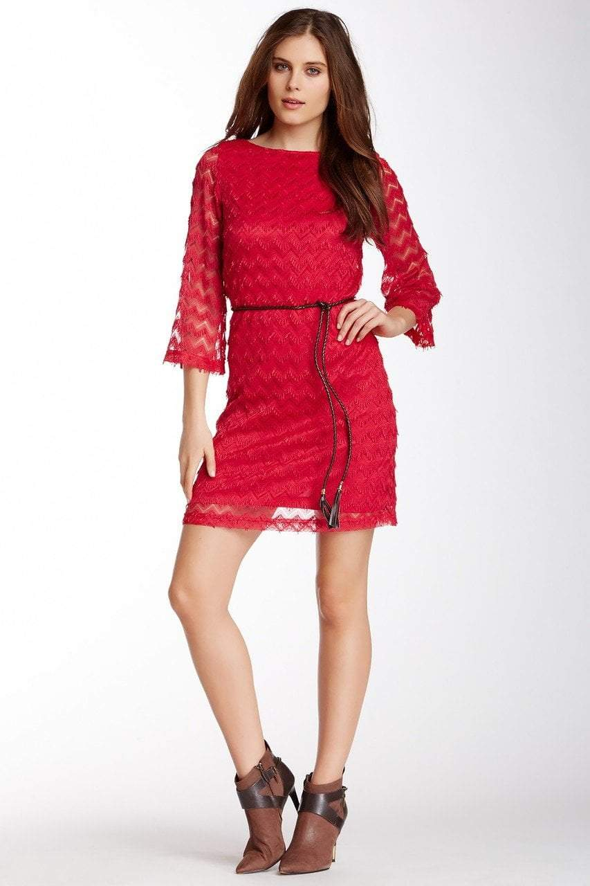 Sharagano - 4W4F164G5 Zigzag Textured Lace Sleeve Dress in Red