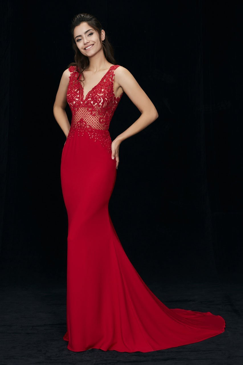 Angela and Alison - 81017 Sleeveless Embroidered Illusion Sheath Gown In Red