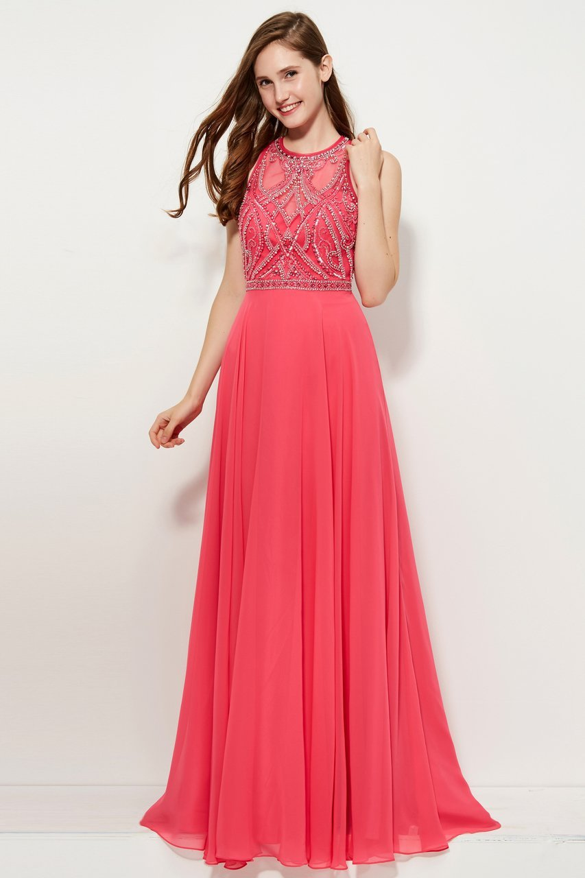 Angela and Alison - 81027 Sleeveless Adorned Illusion Bodice Gown In Pink