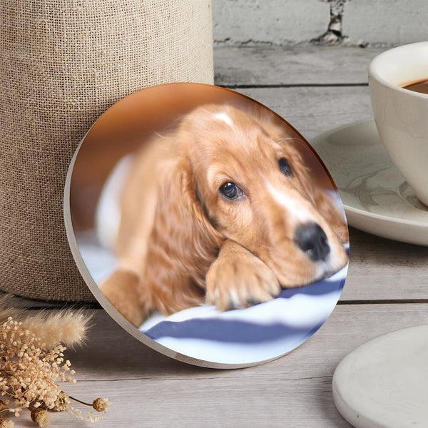 Custom Photo Coaster Round Coaster Gift for Pet Lover