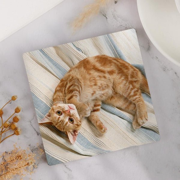 Custom Square Photo Coaster for Cat Lover
