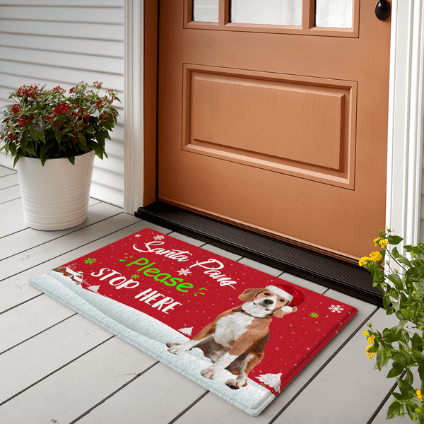 Christmas Gifts Custom Doormat Christmas Doormat With Pet Photo