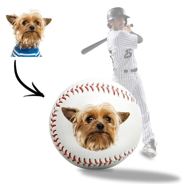 Personalized Baseball Coach Gifts Cute Dog Photo Customized Baseball Gifts