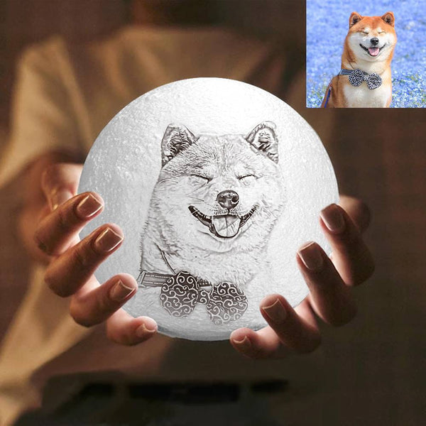 3D Printing Moon Light Photo Engraved, Cute Pet - Touch Two Colors 10-20cm