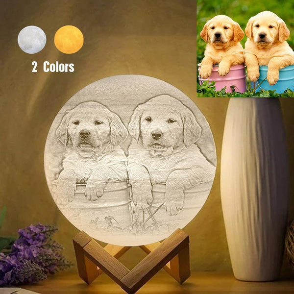 Custom Cute Pet 3D Printed Jupiter Lamp Personalized Gift - Touch Two Colors (10-20cm)