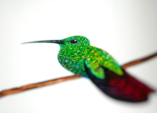 How to Paint a Hummingbird in 12 Steps