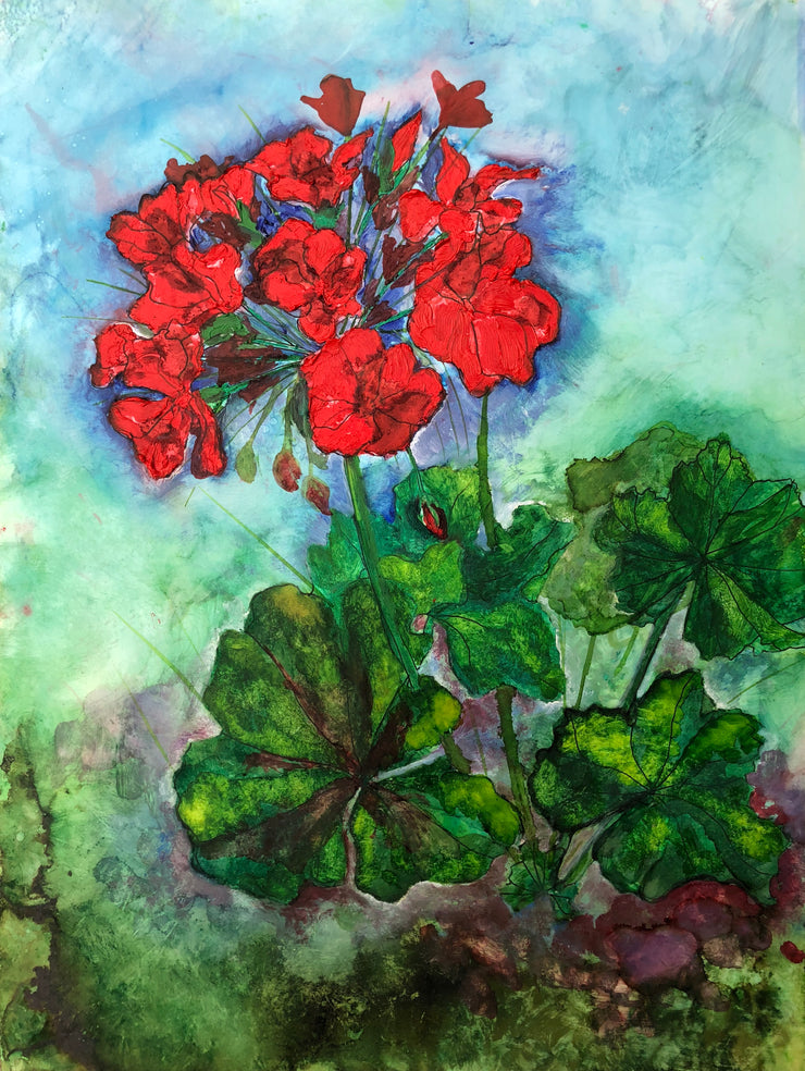 Geraniums : Greeting Card
