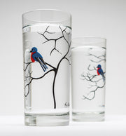 Bluebird Glasses