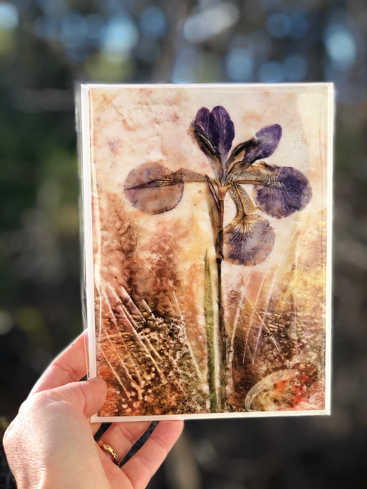 Pressed Iris Encaustic Art : Greeting Card