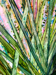 Saw Palmettos : Prints