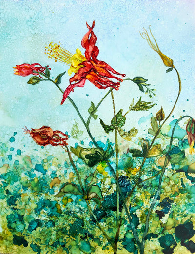 Columbine Flowers : Prints