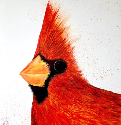 Big Red Cardinal : Original Painting