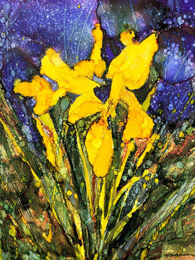 Yellow Irises : Prints