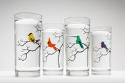 Finch Glasses