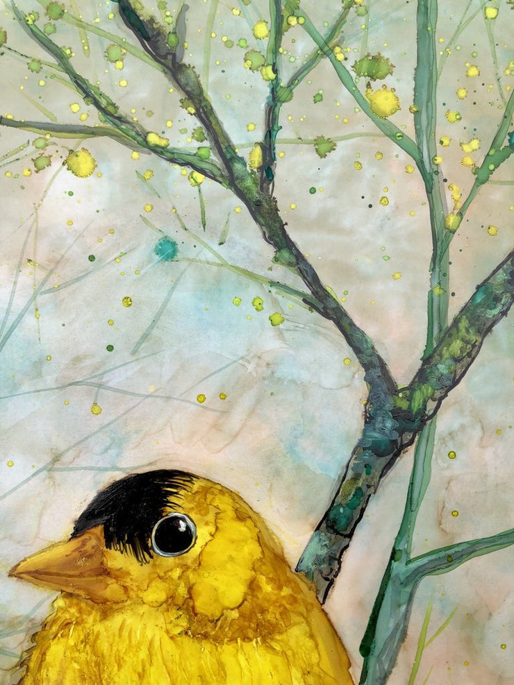 Goldfinch Gift Set : Card and Glasses