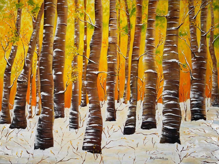 Snowy Birch Trees : Prints