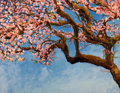 Cherry Tree : Greeting Card