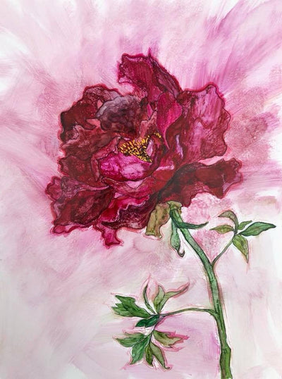 Tree Peony : Greeting Card