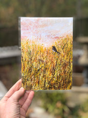 Sparrow in the Meadow : Prints