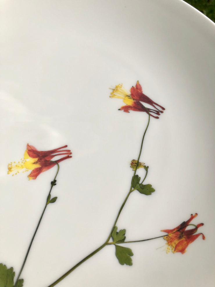 Pressed Columbine Flower Plates