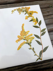 Goldenrod Flower Ceramic Tiles : Indoor and Outdoor Use
