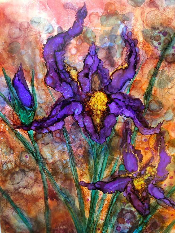 Purple Irises : Greeting Card