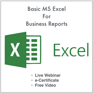 Basic MS Excel for Business Reports + Video Webinar (10/17/2020)