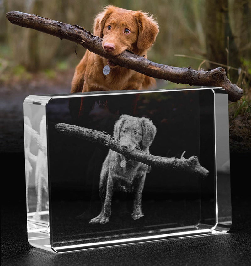 Personalized 3D Crystal Photo