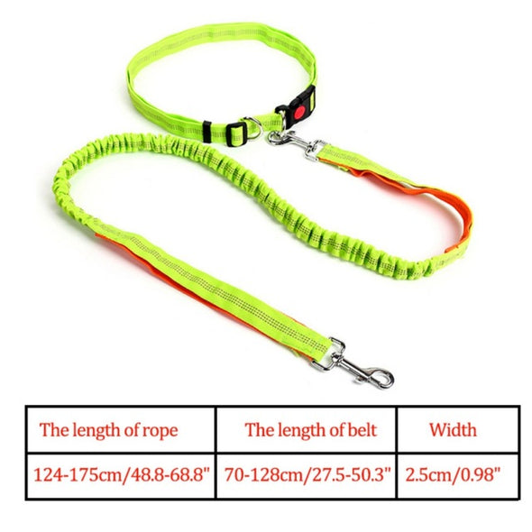 Night Reflective Elastic Nylon Breakaway Leashes Running Hand Free Waist Belt Jogging Leads Retractable Leash For Small Pet Dogs