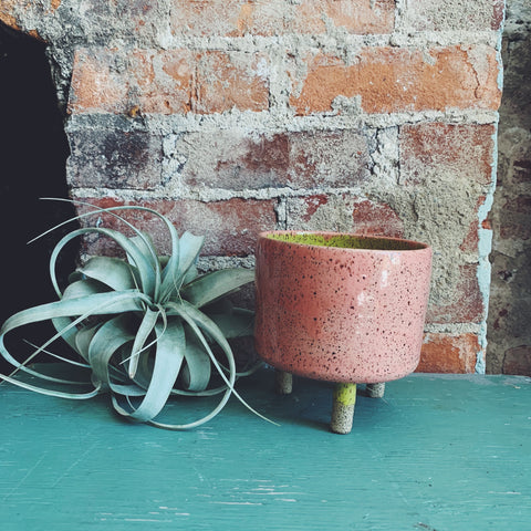 Three Legged Ceramic Planter