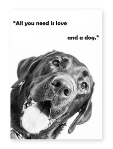 All You Need Is Love and a Dog, Framed Print