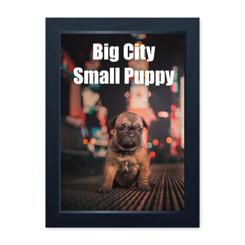Big City Small Puppy, Framed Print