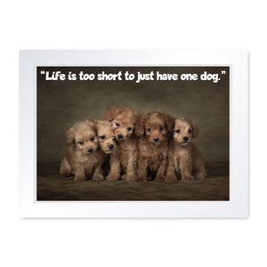 Life is Too Short To Just Have One Dog, Framed Print