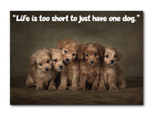 Load image into Gallery viewer, Life is Too Short To Just Have One Dog, Framed Print