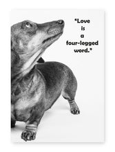 Load image into Gallery viewer, Love Is A Four Legged Word, Framed Print