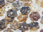 Seashell Buttons - Daisy 50 pieces