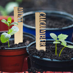 Wooden Potted Plant Markers with Engraving and Plant Names