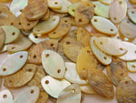 Seashell Buttons - Cat Eye 50 pieces