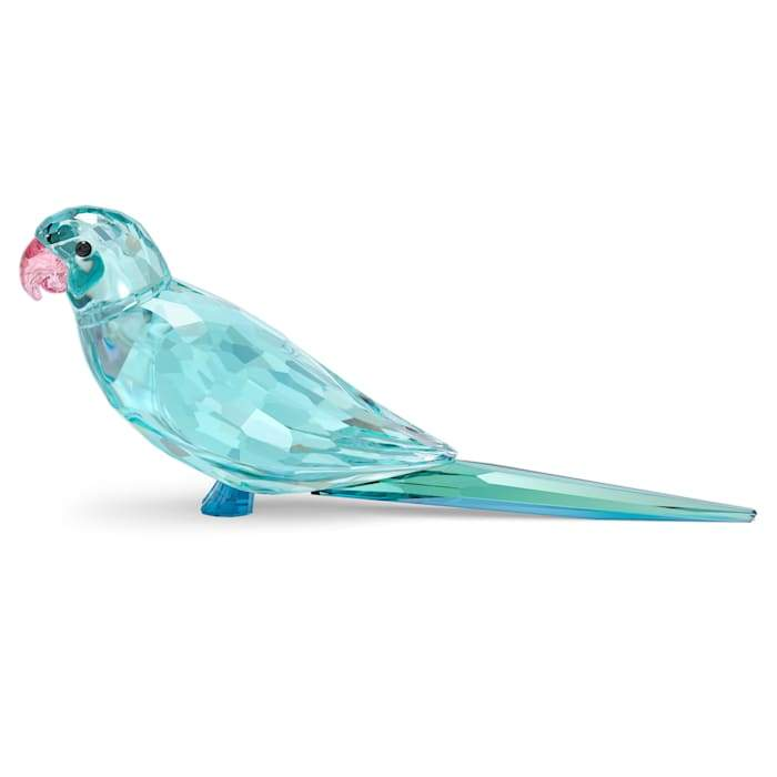 Swarovski Jungle Beats: Blue Parakeet, 5574519
