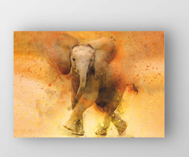 "Woolly Mammoth Media 30x20"" Canvas Elephant 'Stompy' Wall Art Print Animal Wildlife Artwork"