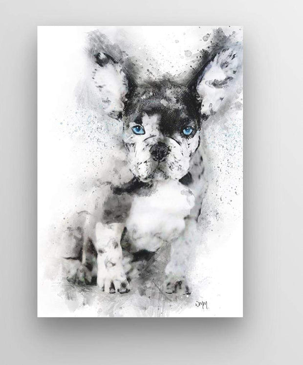 "Woolly Mammoth Media 30x20"" Canvas French Bulldog Dog Wall Art Print 'Frenchie'"