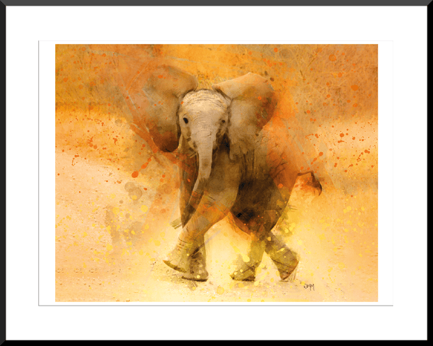 Woolly Mammoth Media Stompy the Elephant Wall Art Print | Animal Wildlife Artwork