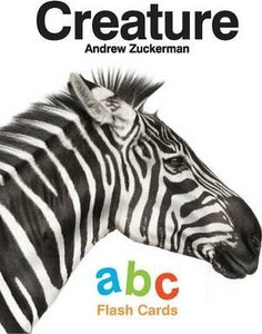 Andrew Zuckerman ABC flash cards